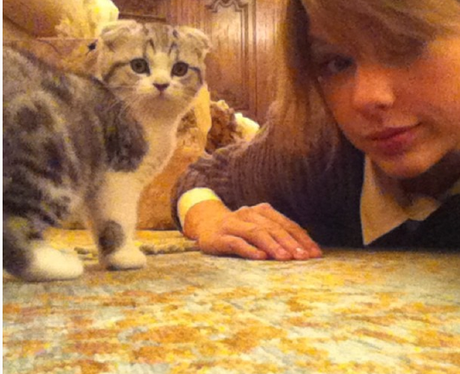 Taylor Swift with her cat