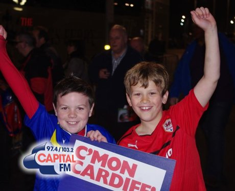 Cardiff City's Promotion