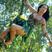 Image 3: Katy Perry 'Roar'