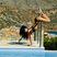 Image 7: Rihanna upside down twerk