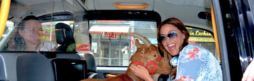 Lisa Snowdon And Betty The Goat