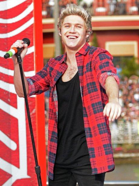 Niall Horan 2015