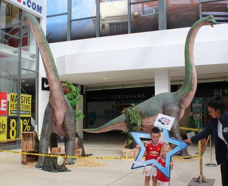Dinosaurs at Grosvenor?!